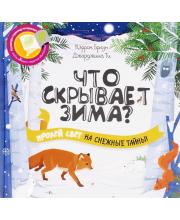 Развивающая книга Что скрывает зима?