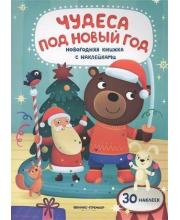 Развивающая книжка Чудеса под Новый год Феникс