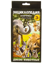 Энциклопедия в карточках Дикие животные 29 шт Ульева Е. Феникс