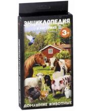 Энциклопедия в карточках Домашние животные