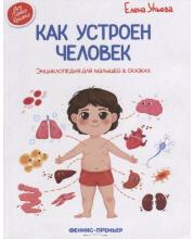 Энциклопедия для малышей Как устроен человек Ульева Е. Феникс