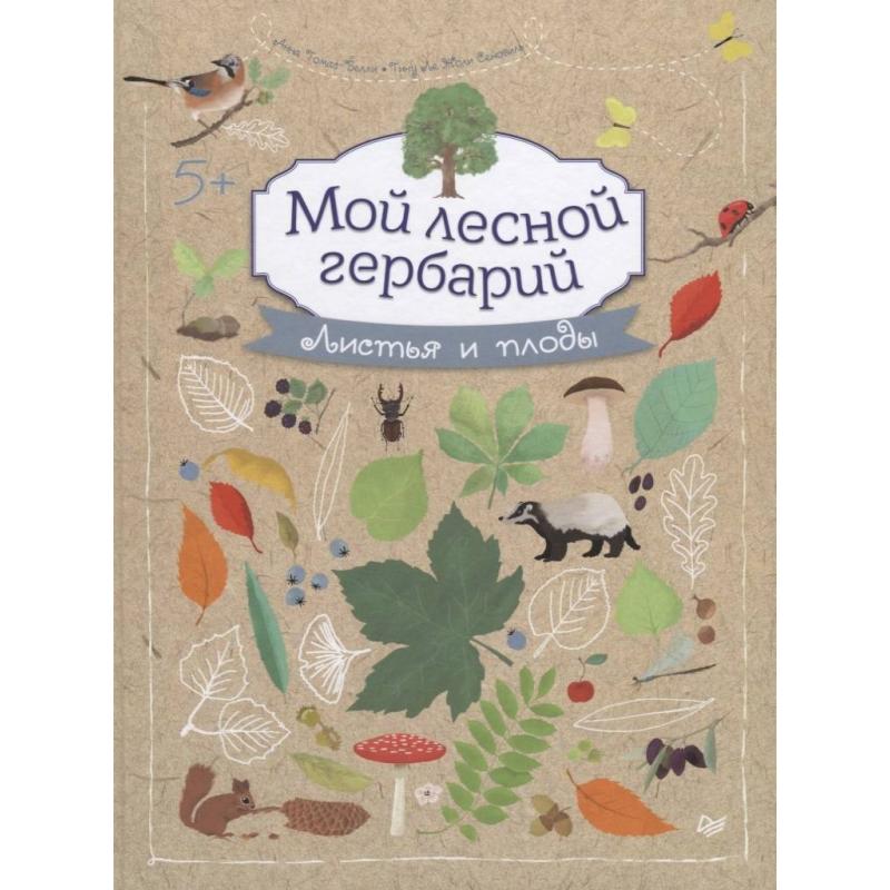 Купить Развивающая книга-альбом Мой лесной гербарий Томас-Белли А., ИД Питер, от 5 лет, Не указан, 114011, Россия