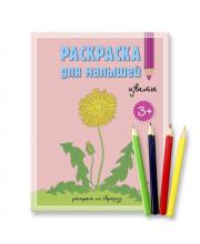 Раскраска для малышей Цветы с карандашами