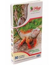 Набор карточек Загадочные рептилии 25 шт Умница