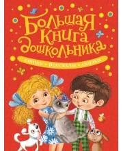 Большая книга дошкольника РОСМЭН