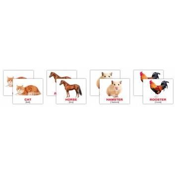 Книги и развитие, Набор карточек Domestic animals/Домашние животные 40 шт Вундеркинд с пелёнок , фото