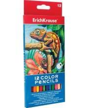 Карандаши цветные ArtBerry 12 цветов Erich Krause