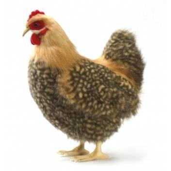 Игрушки, Курица палевая 35 см Hansa 226547, фото