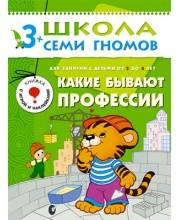 Книга Школа Семи Гномов Четвертый год обучения Какие бывают профессии Дорожин Ю.