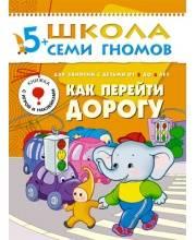 Книга Школа Семи Гномов Шестой год обучения Как перейти дорогу Денисова Д.
