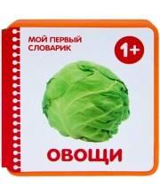 Мой первый словарик Овощи Краснушкина Е. Е.