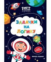 Задачки на логику: полет в космосе: книжка-гармошка Ивинская С. Феникс