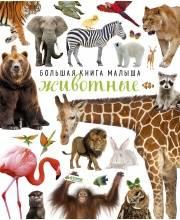 Большая книга малыша Животные Издательство Clever