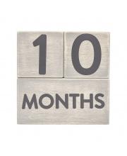 Кубики от 1 до 12 месяцев Pearhead