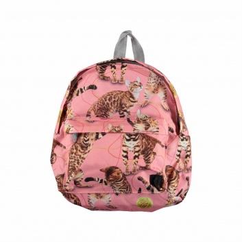 Школа, Рюкзак Backpack Molo (розовый), фото