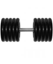 Гантель профи 53,5 кг Barbell