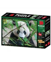 Стерео пазл Большая панда 500 деталей Prime 3D