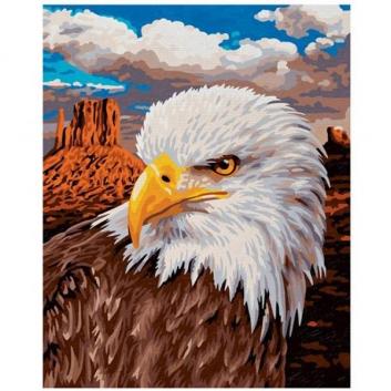 Творчество, Картина по номерам Белоголовый Орлан Schipper 634420, фото