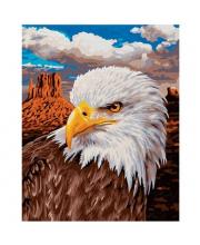 Картина по номерам Белоголовый Орлан Schipper