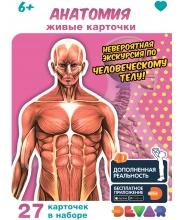 Набор карточек Анатомия в доп реальности Devar