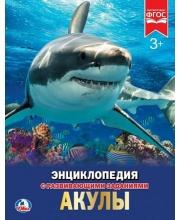 Энциклопедия Акулы