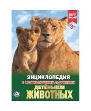 Энциклопедия Детеныши Животных