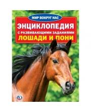 Энциклопедия Лошади И Пони