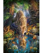 Пазл 1500 Волк в дикой природе Кастор
