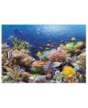 Пазлы 1000 Коралловый риф Кастор
