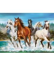 Пазлы 2000 Бегущие лошади Кастор