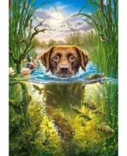 Пазлы 500 Собака в пруду Кастор