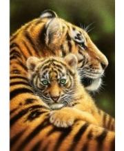 Пазлы 500 Тигры Кастор