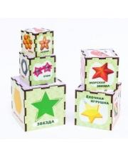 Сортер-пирамидка Формы 5 кубиков Woodland