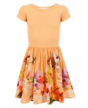 Платье Cissa Molo