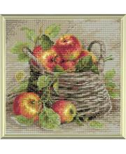 Набор алмазной мозаики Спелые яблоки РИОЛИС