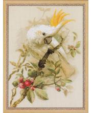 Набор для вышивания Белый какаду РИОЛИС