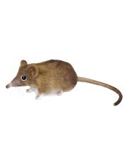 Мышь-землеройка 14 см Hansa