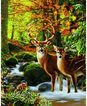 Картина по номерам Олени в лесу 40х50 см Schipper