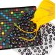 Игрушки, Настольная игра Эрудит Биплант 658362, фото 4