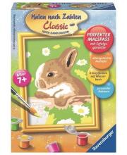 Картина по номерам Кролик в ромашках