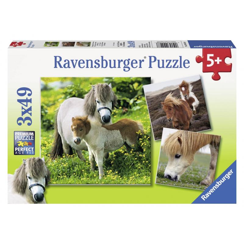 Пазл Очаровательные пони 3 штПазл Очаровательные пони3шт. марки Ravensburger.<br>В набор входит 3пазла по 49элементов.<br>Размер картинки: 18х18 см.<br><br>Возраст от: 5 лет<br>Пол: Не указан<br>Артикул: 653754<br>Бренд: Германия<br>Размер: от 5 лет