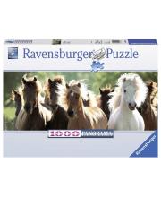 Пазл панорамный Дикие лошади 1000 деталей RAVENSBURGER