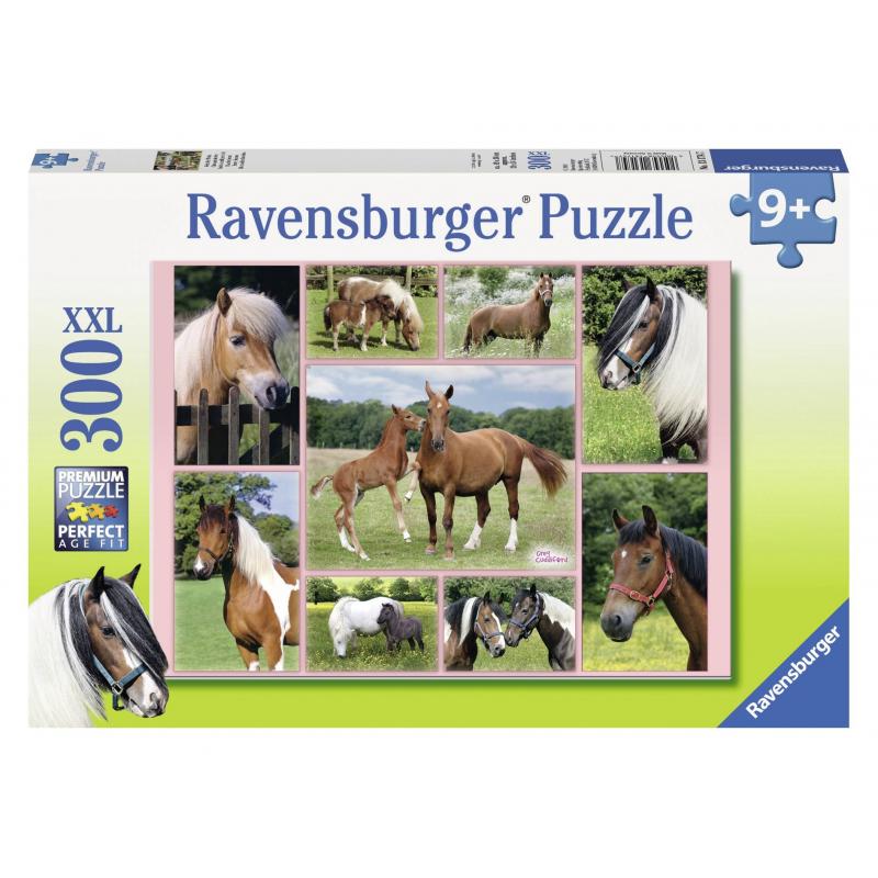 RAVENSBURGER Пазл Галерея лошадей XXL 300 деталей железо для лошадей украина