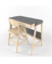 Растущий стол и стул Вуди 38 Попугаев