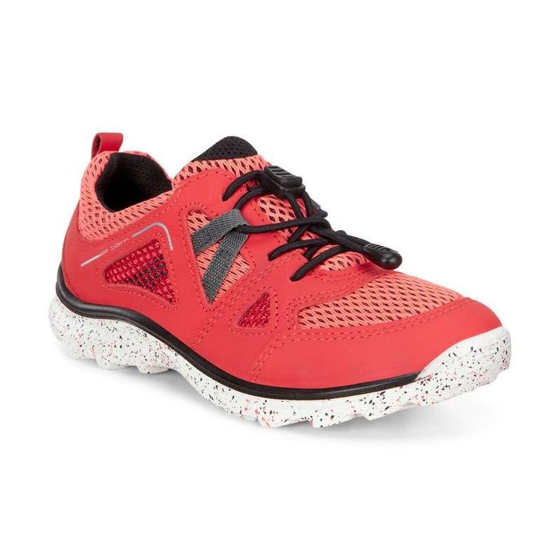 КроссовкиКроссовкикоралловогоцвета марки ECCO длядевочек.<br>Стильные кроссовки выполнены в ярком цвете и выгодно подчеркнуты контрастной шнуровкой, а такжеподошвой белого цвета с принтом конфетти.Технология быстрой шнуровки Speed Lace облегчает надевание и позволяет регулировать размер. Дышащая текстильная подкладка поддержит оптимальный микроклимат ног. Легкая полиуретановая подошва обладает амортизирующим эффектом,высокой износостойкостью и гибкостью.<br>Светоотражающие элементы обеспечат безопасность в темное время суток.<br><br>Размер: 34<br>Цвет: Коралловый<br>Пол: Для девочки<br>Артикул: 675014<br>Страна производитель: Индонезия<br>Сезон: Весна/Лето<br>Материал верха: Натуральная кожа/Текстиль<br>Материал подкладки: Текстиль<br>Материал стельки: Текстиль<br>Материал подошвы: Полиуретан/Резина<br>Бренд: Дания