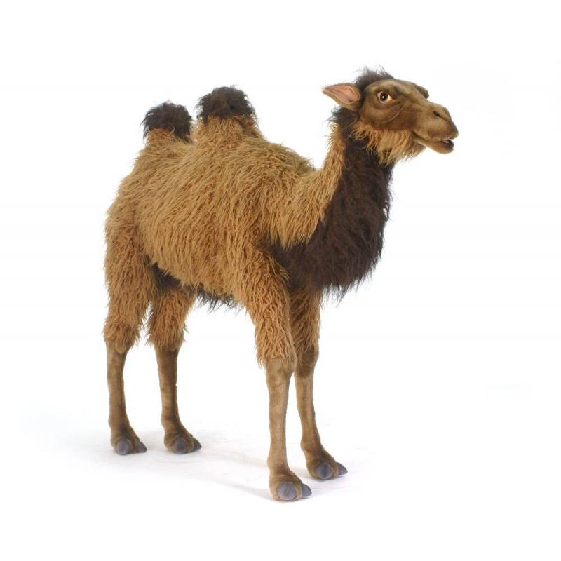 Hansa Мягкая игрушка Верблюд hansa верблюд 22 см hansa