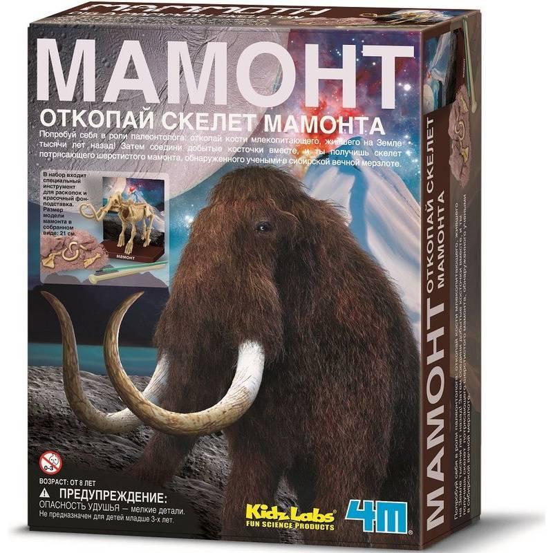 Купить Набор Скелет Мамонта, 4М, от 8 лет, Не указан, 637196, Китай